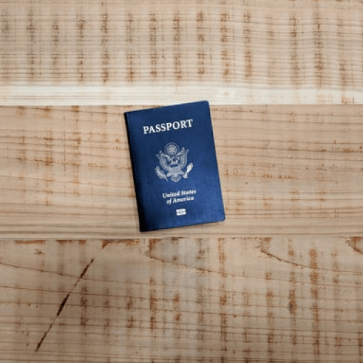 THE U NONIMMIGRANT STATUS OR U VISA